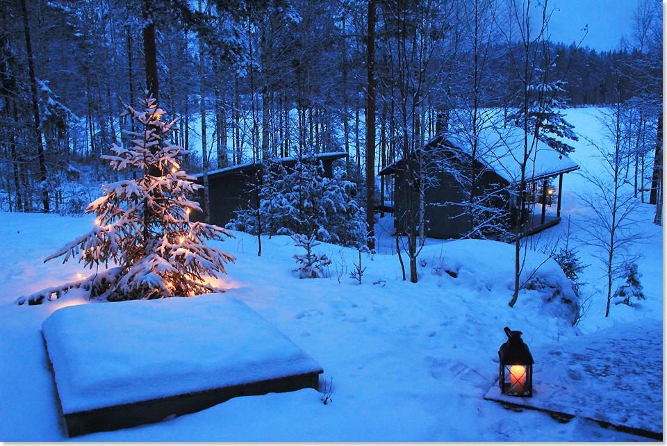Blaue Weihnachtsbeleuchtung.Kurs Nord In Den Winterwald Seereisenmagazin